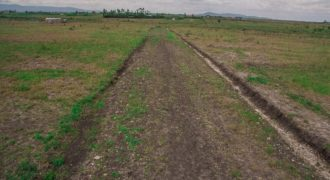 12 Acre land on sale